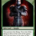 Kingdom magic knight